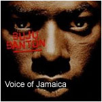 Voice of Jamaica